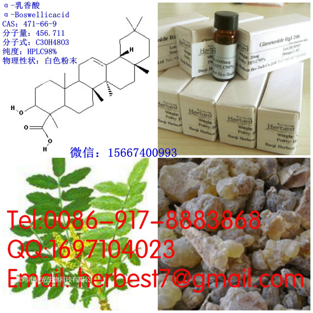 α-乳香酸